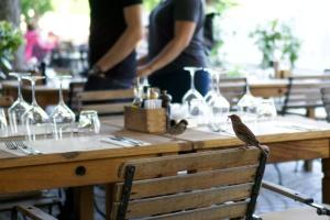 Vrabec v Lublani
